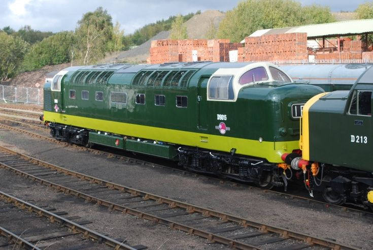 Railway Herald :: Imaging Centre :: D9015 at Barrow Hill Shed