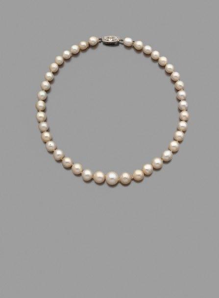 1000 id es sur le th me colliers de perles d 39 eau douce sur. Black Bedroom Furniture Sets. Home Design Ideas