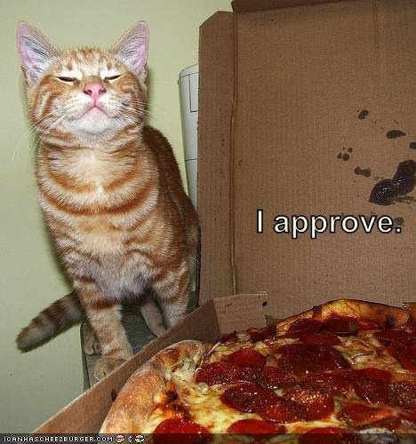 Cat Dating Profile Pepperoni Ingredients Without Pork