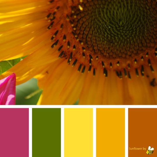 Sunflower palette by BeeBox (ONLY FOR PERSONAL USE!)