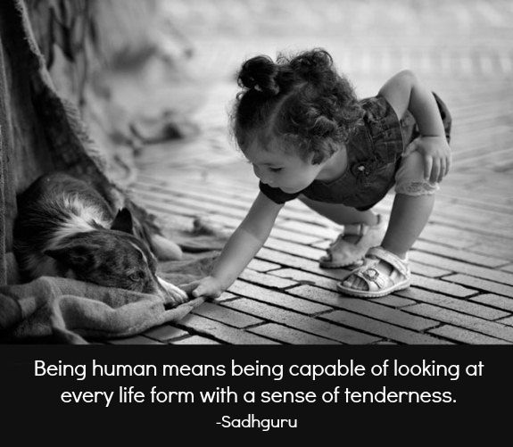 Being human means being capable of looking at every life form  with a sense of tenderness. ~ Sadhguru ♥