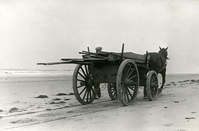 Strandjutter verzamelt wrakhout / Beachcomber gathering wreckage
