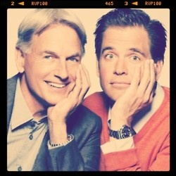 Mark Harmon and Michael Weatherly