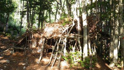 Rifugi a terra e sopraelevati con materiale naturale (tronchi, foglie, rami).