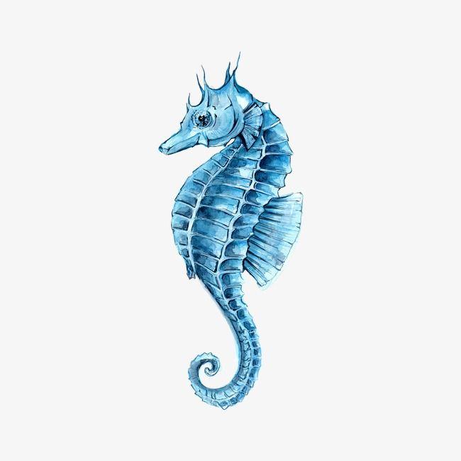 Seahorse Clipart Free Download Creazilla Animal Clipart Free Seahorse Cartoon Seahorse Image