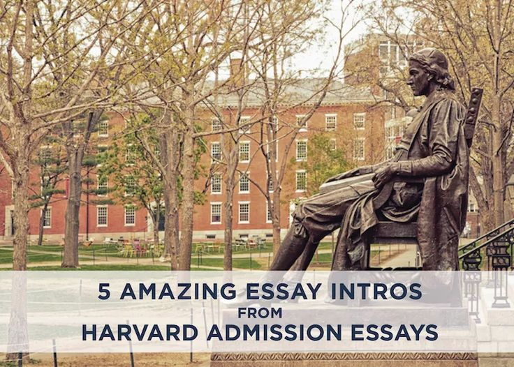 Buy college admissions essay example harvard