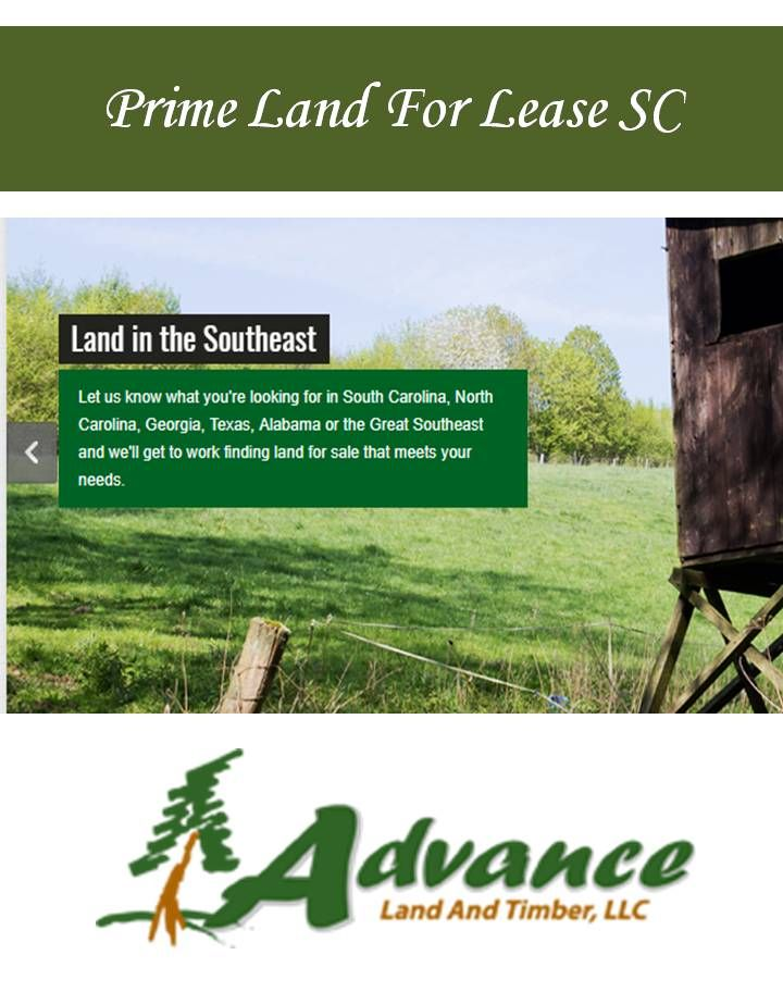 Here, you will find the right hunting land for sale and purchase it, all that freedom and power is yours. To know about Prime Land For Lease SC, email at: contact@advancelandandtimber.com Also visit: http://www.advancelandandtimber.com/