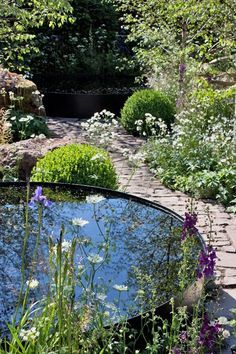 garden design kerry