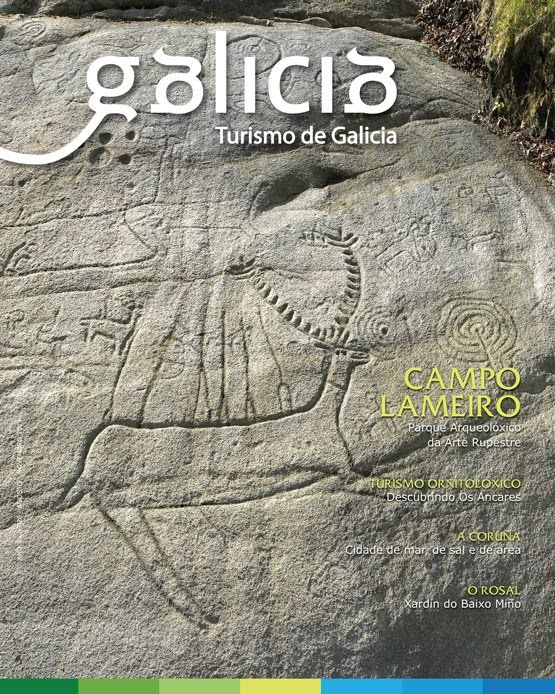 Petroglifos. Campo Lameiro (Pontevedra)