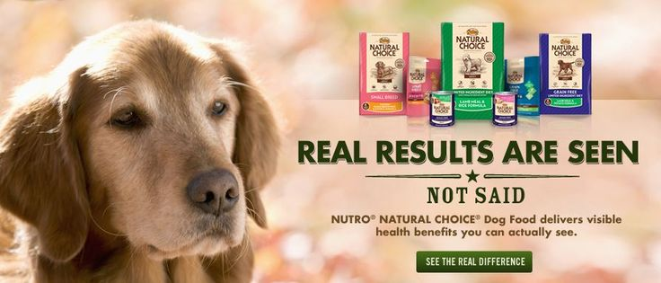 Enter to win Nutro Natural Choice for your dog and some for your rescue / shelter of choice!