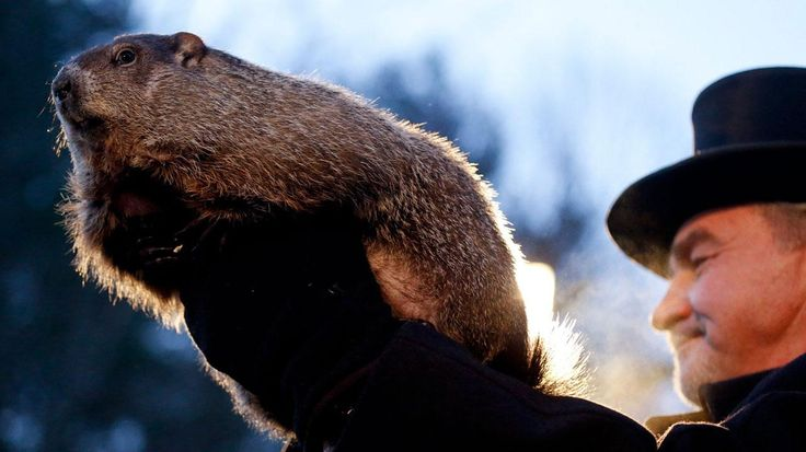 Punxsutawney Phil saw his shadow a little after 7 this morning, forecasting that we're in for 6 more weeks of winter.