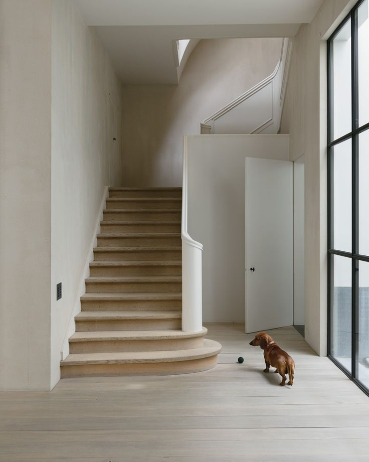Antwerp home of Belgian architect Vincent Van Duysen. Gaston, one of Van Duysen's two dachshunds, stands before the 1940s staircase.