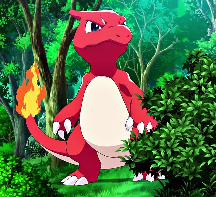 Charmeleon. The first pokemon Sofia caught with mareep's help                                                                                                                                                                                 More