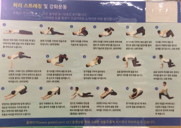 허리 스트레칭 및 강화 운동 Back stretching and strengthening exercises