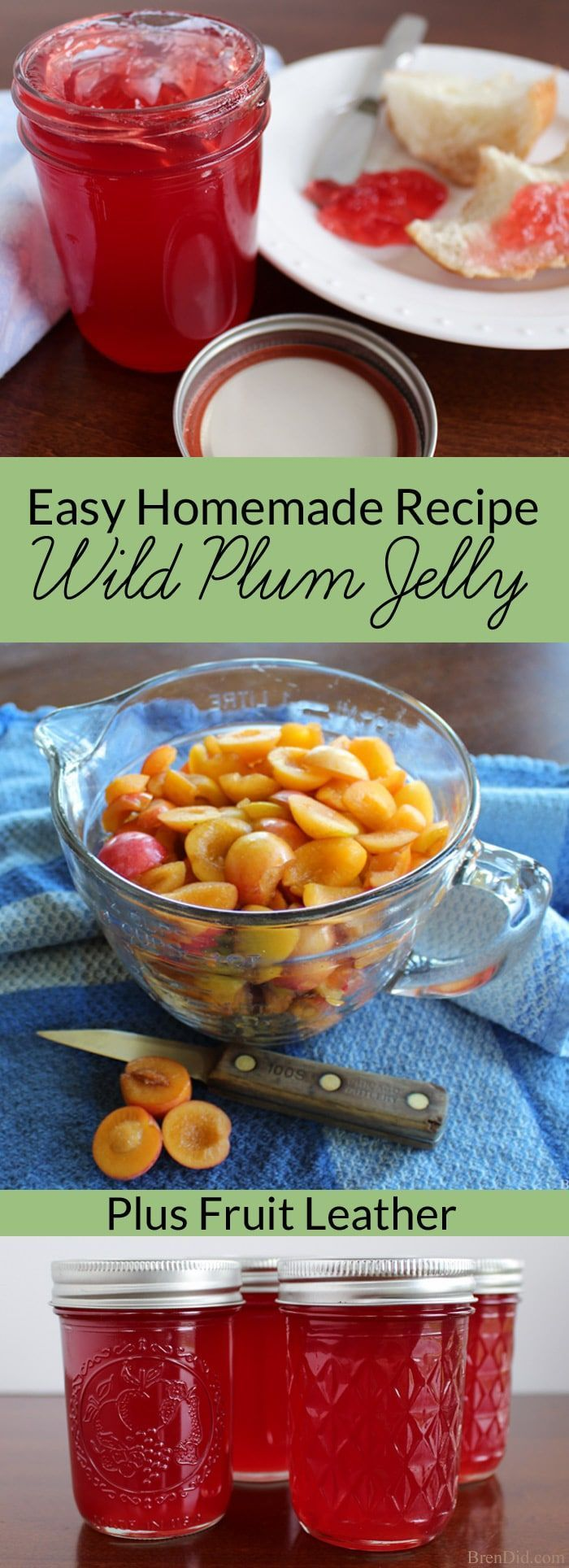 plum jelly recipe | easy homemade jelly | wild plum jelly | how to make jelly via @brendidblog