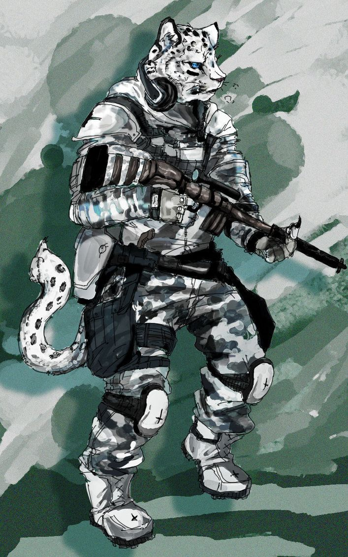 Military snow leopard