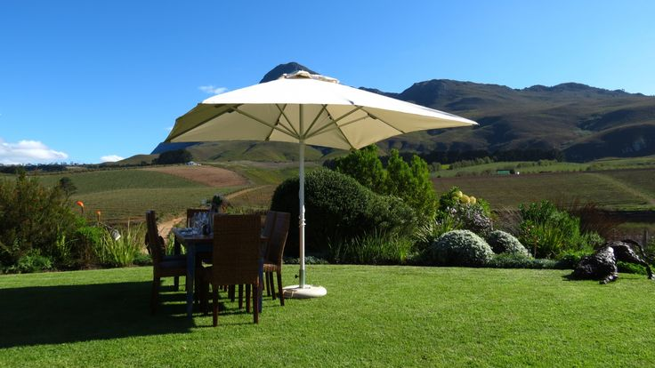 Enjoy the incredible views from Creation Wine estate