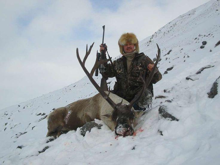 Охота на дикого северного оленя — Республика Саха Якутия