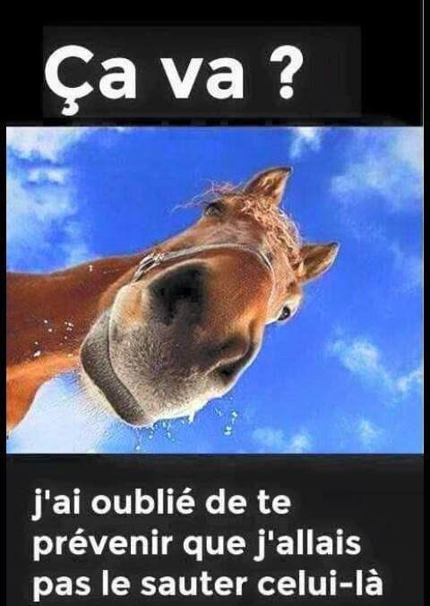 Cher dada, excuse-toi, le cavalier est assez à cheval sur les principes, notamment sur celui d'une bonne com' !
