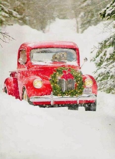 au milieu d'une route de forêt recouverte de neige