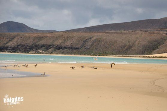 Fuerteventura, presqu'île de Jandia. Risco del paso-©tit-balades