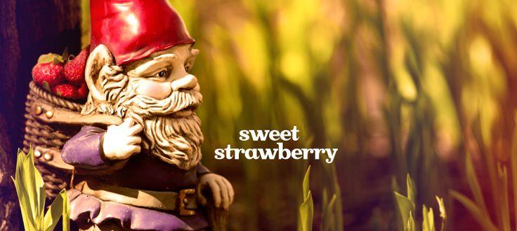 Sweet Strawberry by DavidsTea