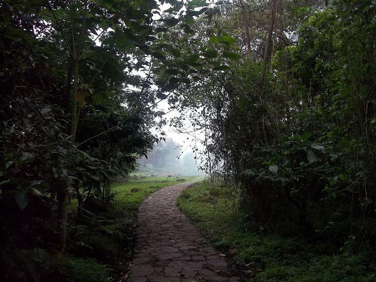 Uno dei sentieri della foreste pluviale Chicaque - De Olgahuertas - Trabajo propio, CC BY-SA 4.0, https://commons.wikimedia.org/w/index.php?curid=36813386