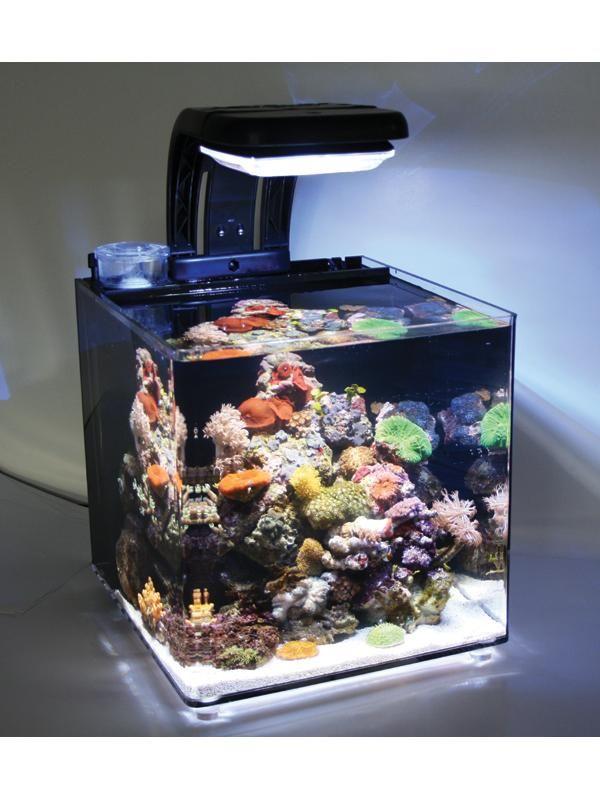 Tmc microhabitat 30 ideally used as a nano reef aquarium for Mini fish tank