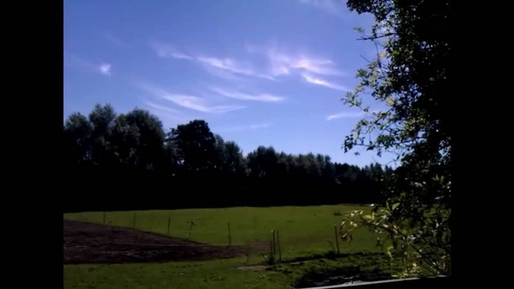 2016-08-25 A Short Visit at the Pond & the Landscape Conservation Area by Stefanie Neumann on YouTube (5:31min)