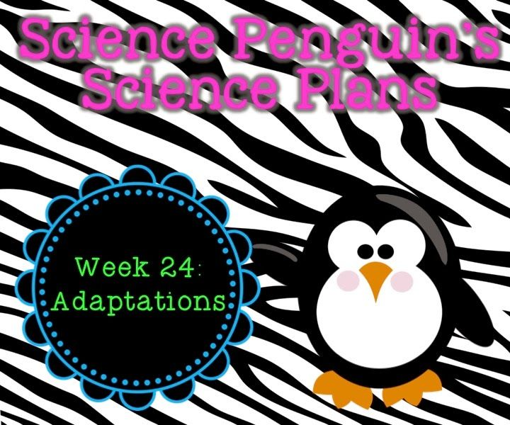The Science Penguin: Science Penguin's Science Plans {Adaptations} - Structures and Processes