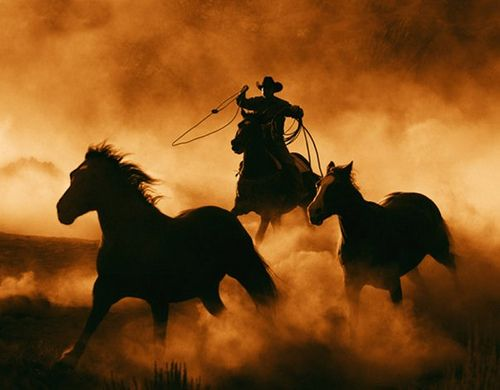 Country cowboys - photo#47