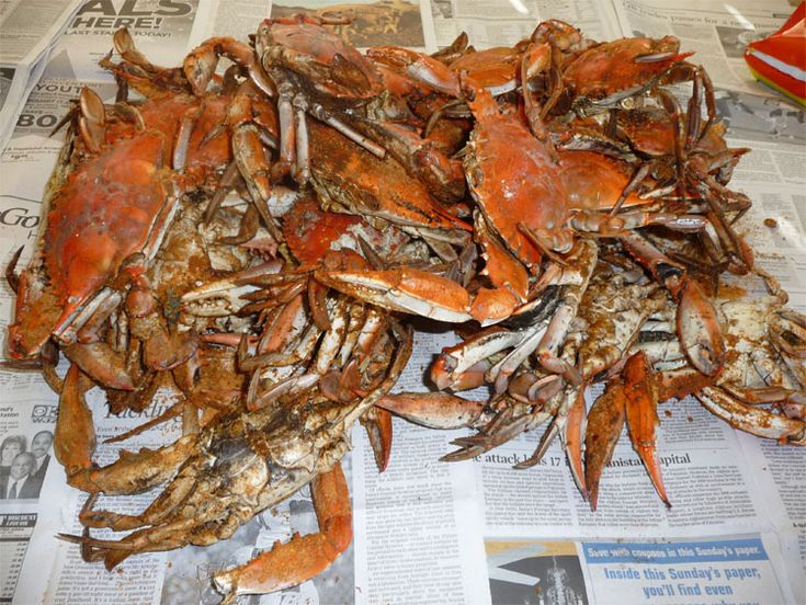 17 Best images about Food from the Sea on Pinterest ...