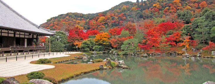 Tenryu-Ji Temple - Kyoto area
