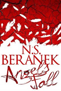 Review of Angels Fall by N.S. Beranek #jaynelockwoodbookreviews #vampires #LGBTQA #WROTEpodcast