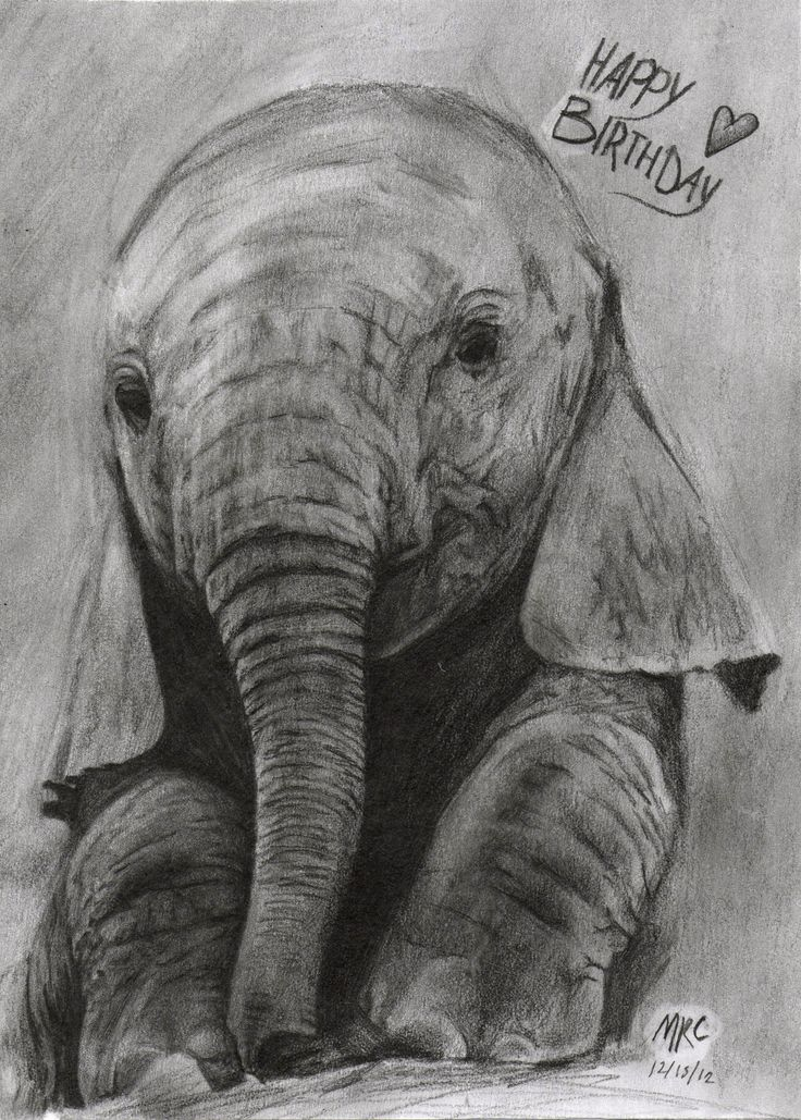 Beautiful Elephant Drawing With Happy Birthday Love