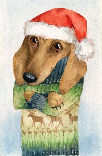 Cute Christmas puppy.