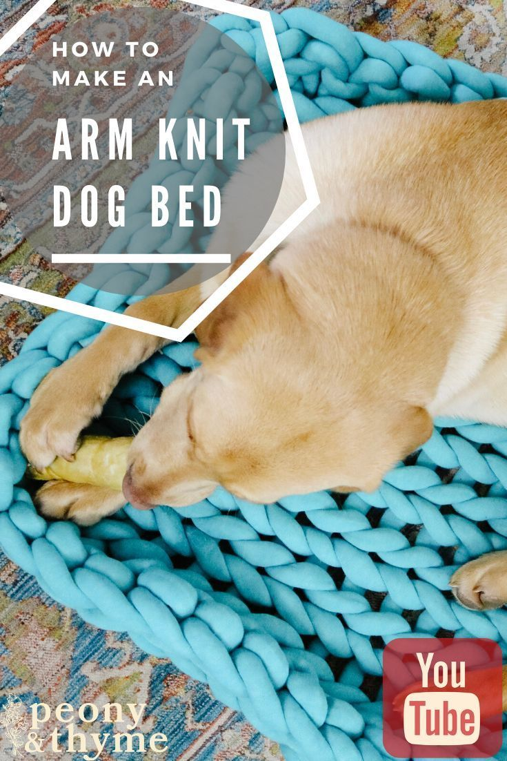 How To Knit A Giant Yarn Dog Bed Machine Washable This Machine Washable Yarn Is Perfect For A Pet Project This Dog Bed Loo Dog Bed Arm Knitting Giant Yarn