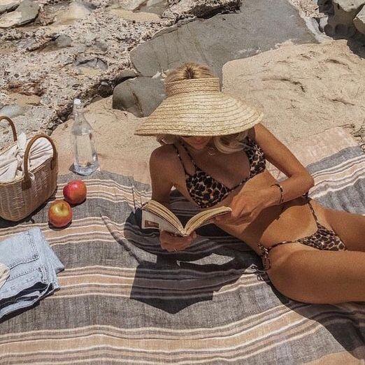 pic nic sur la plage. de l'eau, un brief et panier et des fruits