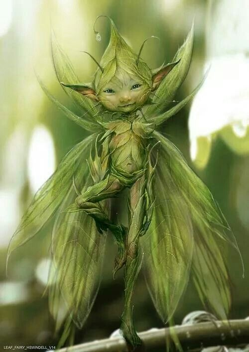 Sprites are not fairies, but their younger siblings. Less prone to anger, but quick to be insulted, and sensitive.