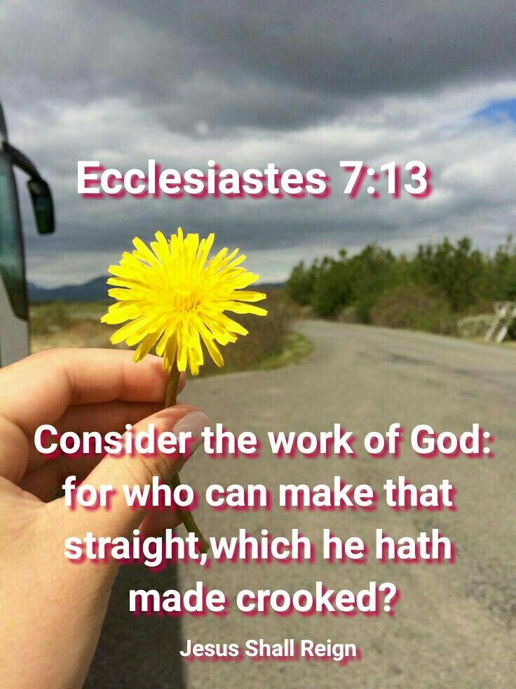 consider gods handiwork who can straighten what he hath made crooked 'consider god's handiwork who can straighten what he hath made crooked' -ecclesiastes 1:14-15 imagine being able to control the characteristics of your children, free from any genetic mutations and diseases.