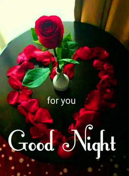 Good Night Images Photo Pics HD Download With Red Rose Wallpaper
