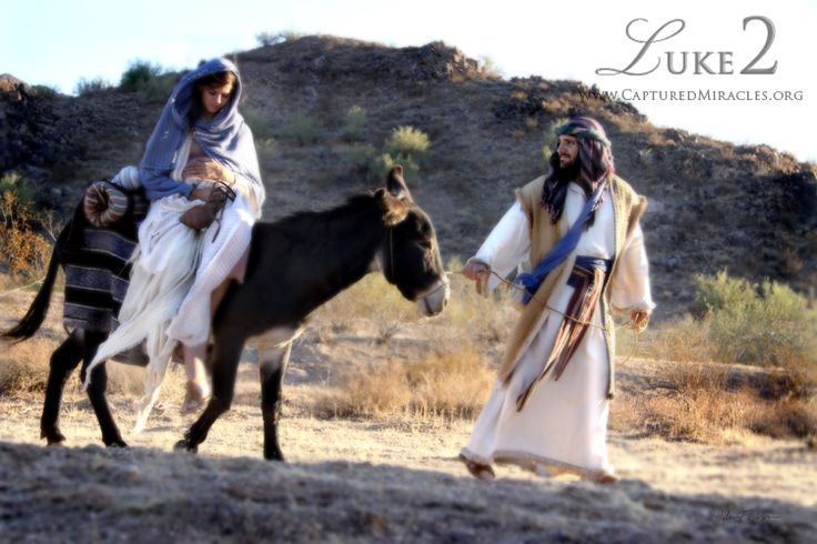 Joseph and Mary journey to Bethlehem:    Luke 2 Collection | Captured Miracles. This fine art photography collection, by Helen Thomas Robson, portrays the birth of Christ. This unique, intimate view of the beginning of Christ's life on this earth.