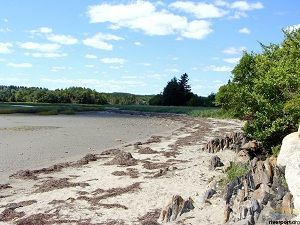 Sand Dollar Beach, Rose Bay, NS - Cottages, Tides, Directions, Events