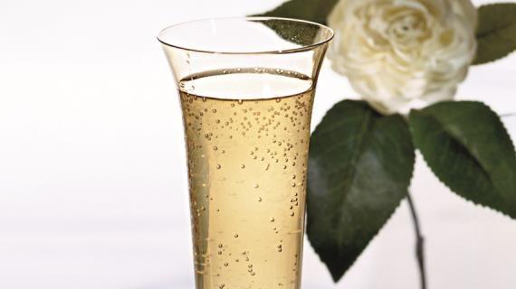 """""""Карибское"""" шампанское. Пошаговый рецепт с фото, удобный поиск рецептов на Gastronom.ru"""
