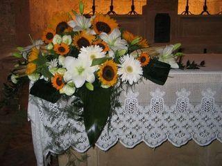 http://www.lafinestradistefania.it/wp-content/uploads/2012/01/foto-27.jpg