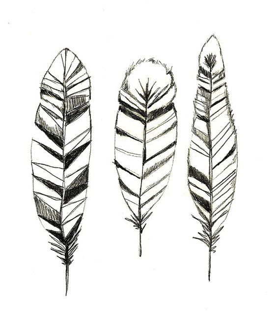 Feathers - Print of Original Drawing by corelladesign
