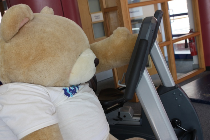 Challenge Charlie our fundraising mascot down at the gym