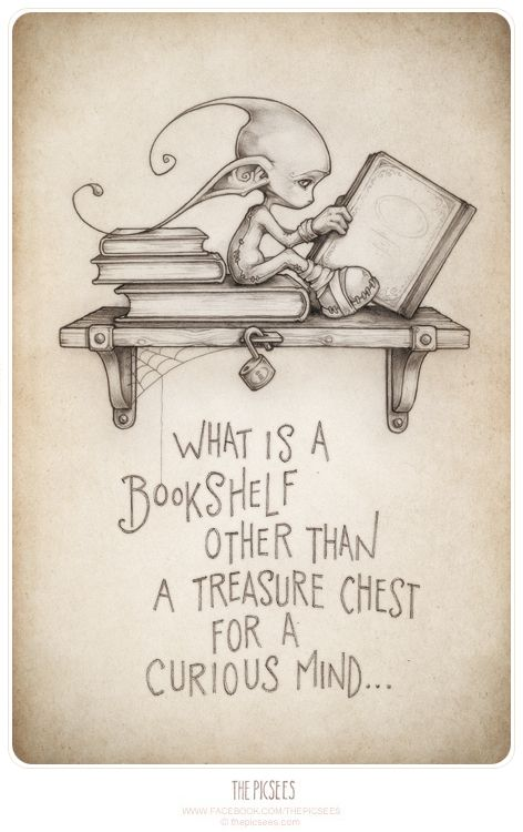What is a bookshelf other than a treasure chest for a curious mind...