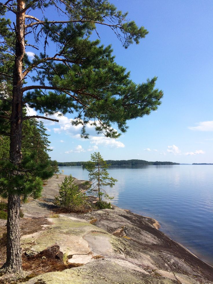Summerday, Finnish nature