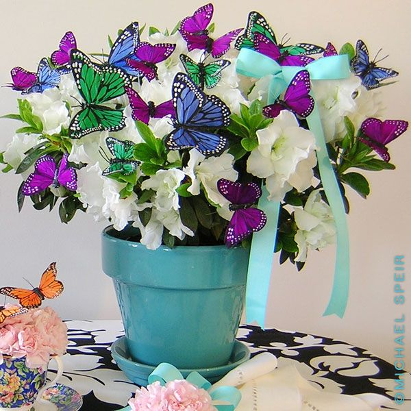 Best purple butterfly baby shower images on pinterest